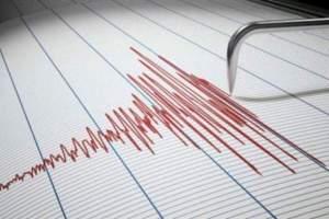 Cutremur în România, în urmă cu puțin timp. Ce magnitudine a înregistat seismul