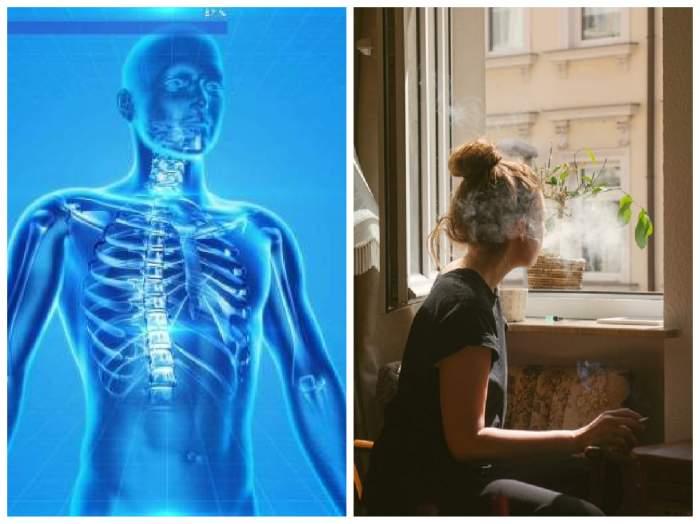 colaj cu sitemul respirator și o persoană care fumează la fereastră