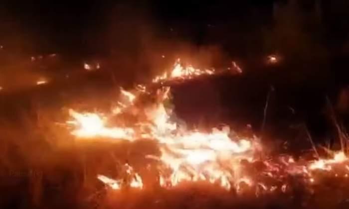 Incendiu de pădure devastator în comuna Inuri, județul Alba. Focul este întins pe 2.000 metri pătrați / FOTO