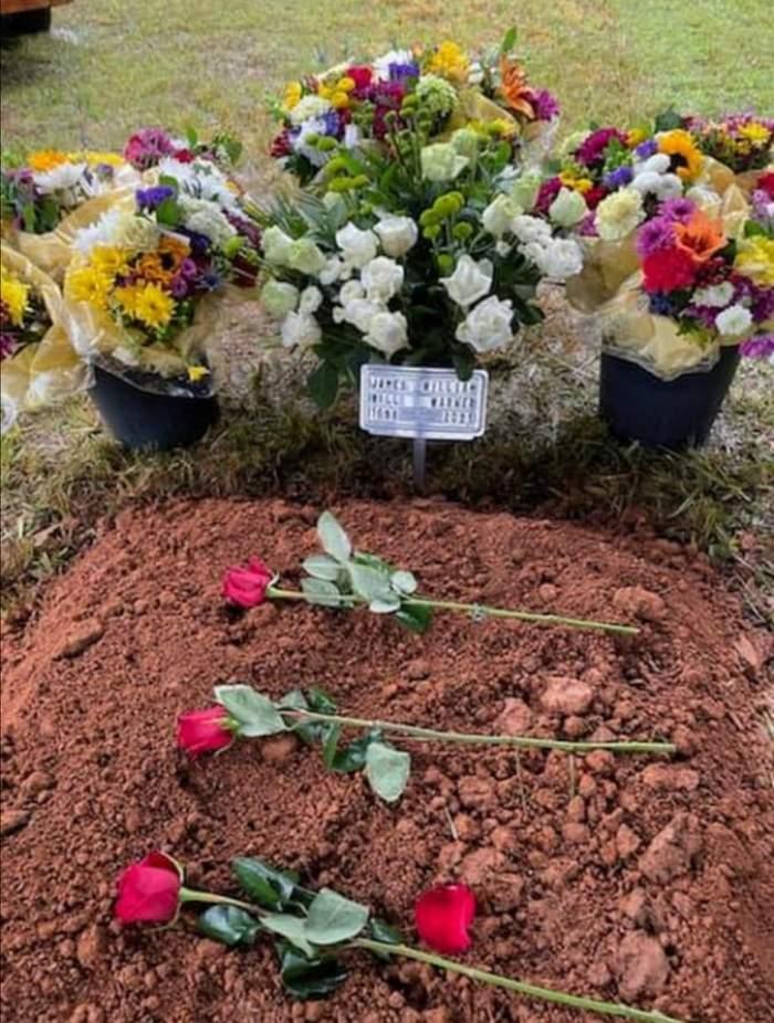 Un câine stă nedezlipit de mormântul stăpânului său, care a fost împușcat de fiul unui celebru judecător. Imaginile care fac înconjurul lumii / FOTO