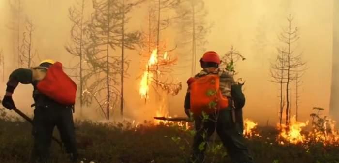 """Incendiu violent de vegetație în Siberia! Locuitorii au fost nevoiți să își părăsească locuințele: """"Nu ne amintim să fi existat vreodată o situație atât de gravă precum acum"""""""