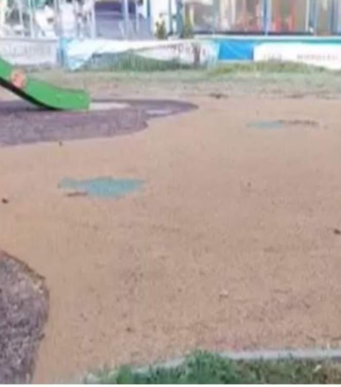 Descoperire șocantă într-un parc din București. Un șarpe de un metru a fost găsit la locul de joacă pentru copii / FOTO