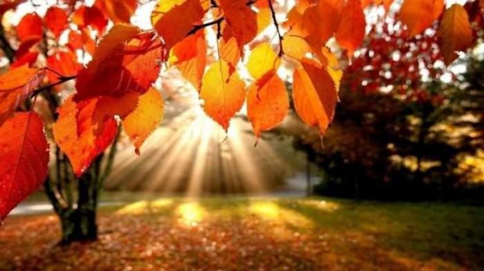 Calendar ortodox, miercuri, 1 septembrie. Tradiții și obiceiuri în prima zi de toamnă. Ce este strict interzis să faci azi
