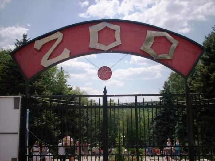 O grădină zoologică va începe să-și vaccineze animalele împotriva virusului SARS-CoV-2