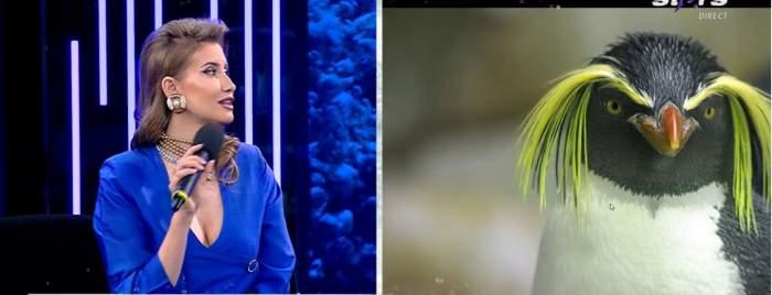 """Care sunt cele mai mari frici ale Iuliei Albu. Creatoarea de modă a mărturisit tot la Xtra Night Show: """"Mi se pare groaznic"""" / VIDEO"""