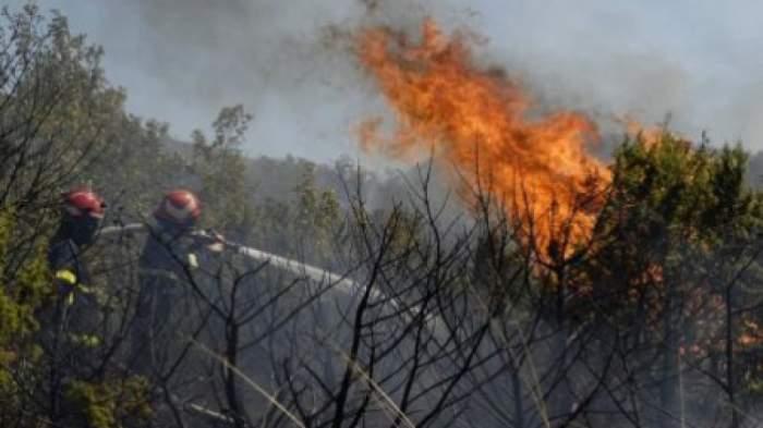 Incendiu de proporții în Mehedinți. Peste 40 de pompieri au intervenit pentru stingerea flăcărilor